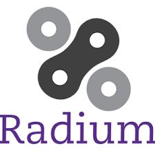 Radiumはスマートチェーンによる利便性の高いアルトコイン
